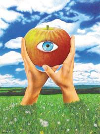 augapfel, acryl auf leinwand, 60 cm x 80 cm