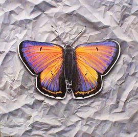 schmetterling, acryl auf leinwand, 95 cm x 95 cm