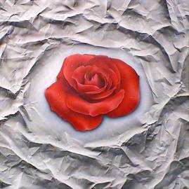 rose, acryl auf leinwand, 95 cm x 95 cm